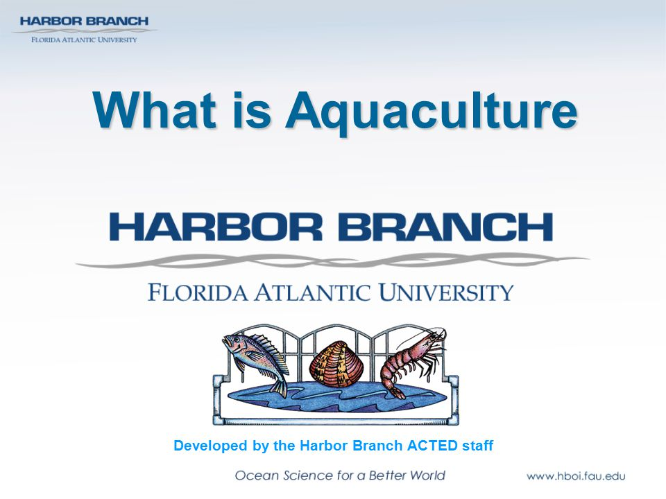 Aquaculture systems: Open Organisms are reared in natural systems No diversion or pumping of water Floating netpens, floating racks, longlines, on-bottom culture