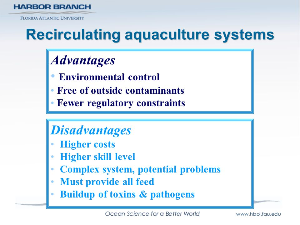 Recirculating aquaculture systems Disadvantages Higher costs Higher skill level Complex system, potential problems Must provide all feed Buildup of to