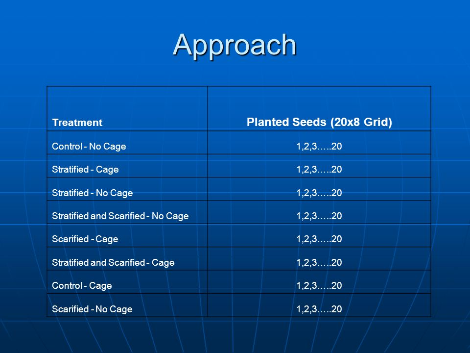 Approach Treatment Planted Seeds (20x8 Grid) Control - No Cage1,2,3…..20 Stratified - Cage1,2,3…..20 Stratified - No Cage1,2,3…..20 Stratified and Sca