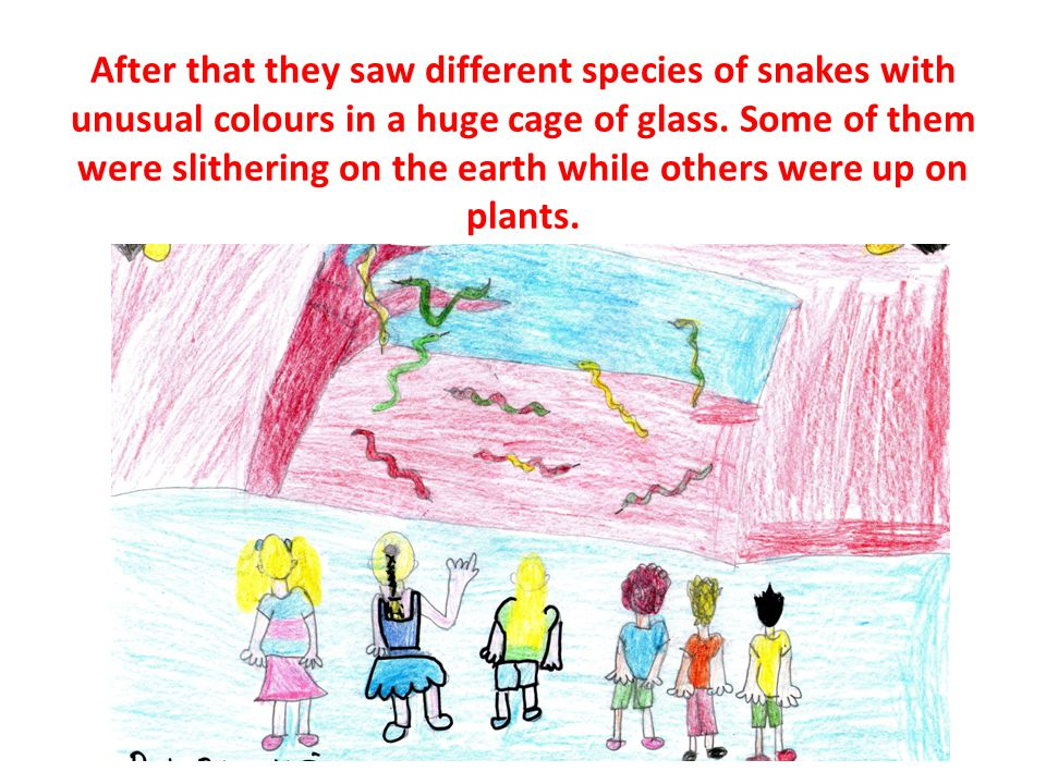 After that they saw different species of snakes with unusual colours in a huge cage of glass.