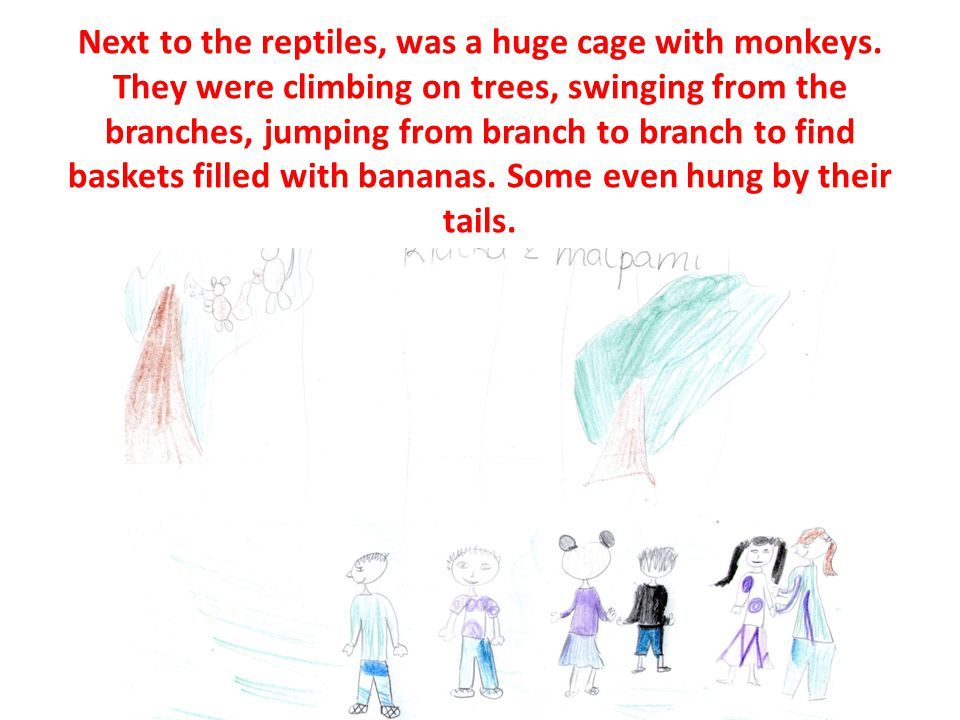 Next to the reptiles, was a huge cage with monkeys.