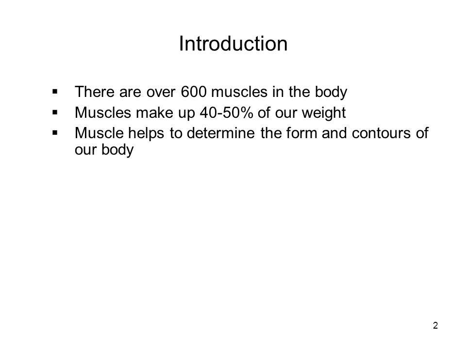 Introduction  There are over 600 muscles in the body  Muscles make up 40-50% of our weight  Muscle helps to determine the form and contours of our