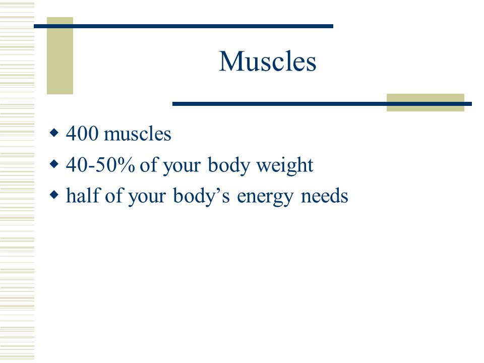 Muscles  400 muscles  40-50% of your body weight  half of your body's energy needs