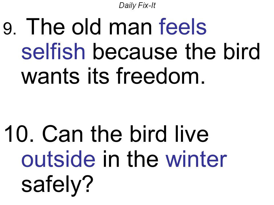 Daily Fix-It 9. The old man feels selfish because the bird wants its freedom. 10. Can the bird live outside in the winter safely?