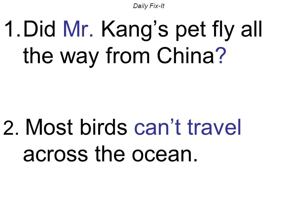 Daily Fix-It 1.Did Mr. Kang's pet fly all the way from China? 2. Most birds can't travel across the ocean.
