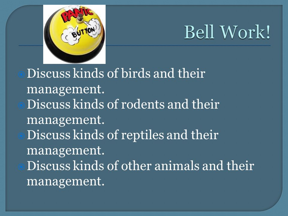  Discuss kinds of birds and their management.  Discuss kinds of rodents and their management.
