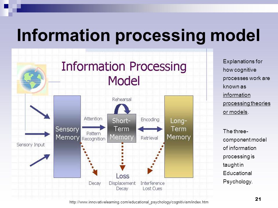 21 Information processing model Explanations for how cognitive processes work are known as information processing theories or models. The three- compo