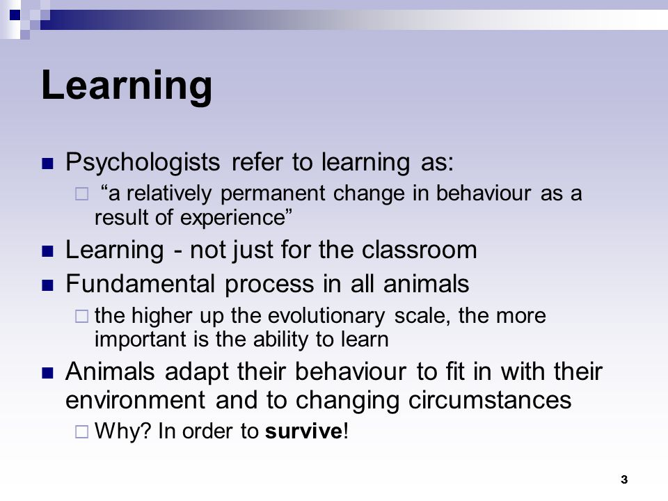 24 Constructivism Constructivism is a theory on how people learn It holds that learning is an active, constructive process Constructivism in education  the curriculum should be learner-centered rather than teacher-centered.