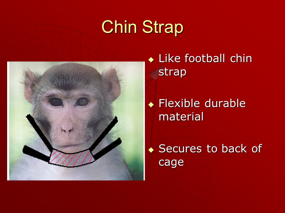 Chin Strap  Like football chin strap  Flexible durable material  Secures to back of cage
