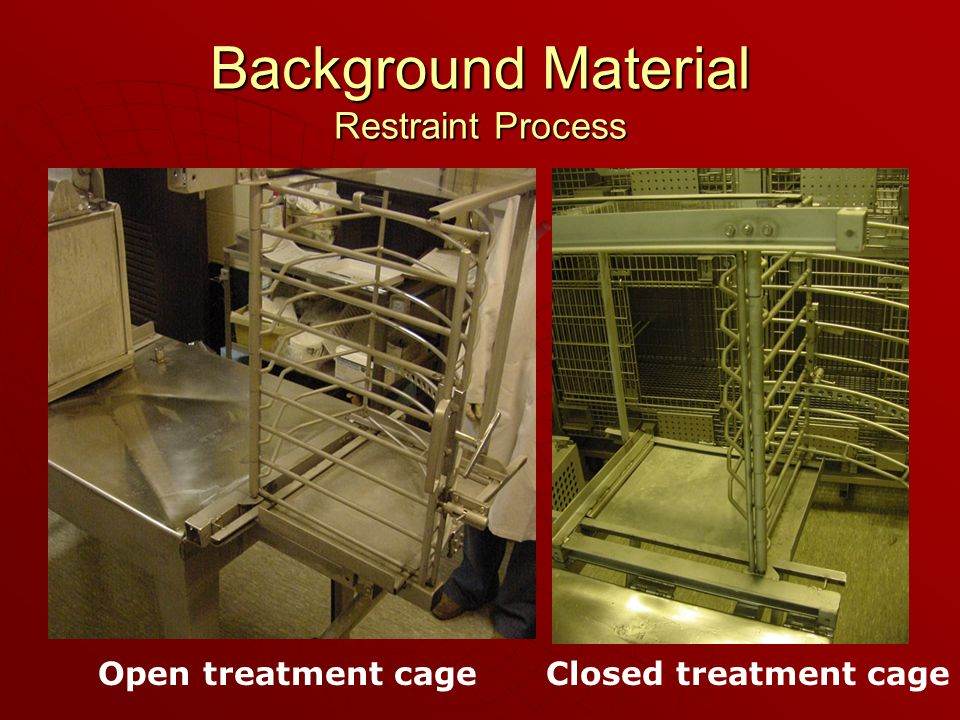 Background Material Restraint Process Open treatment cageClosed treatment cage