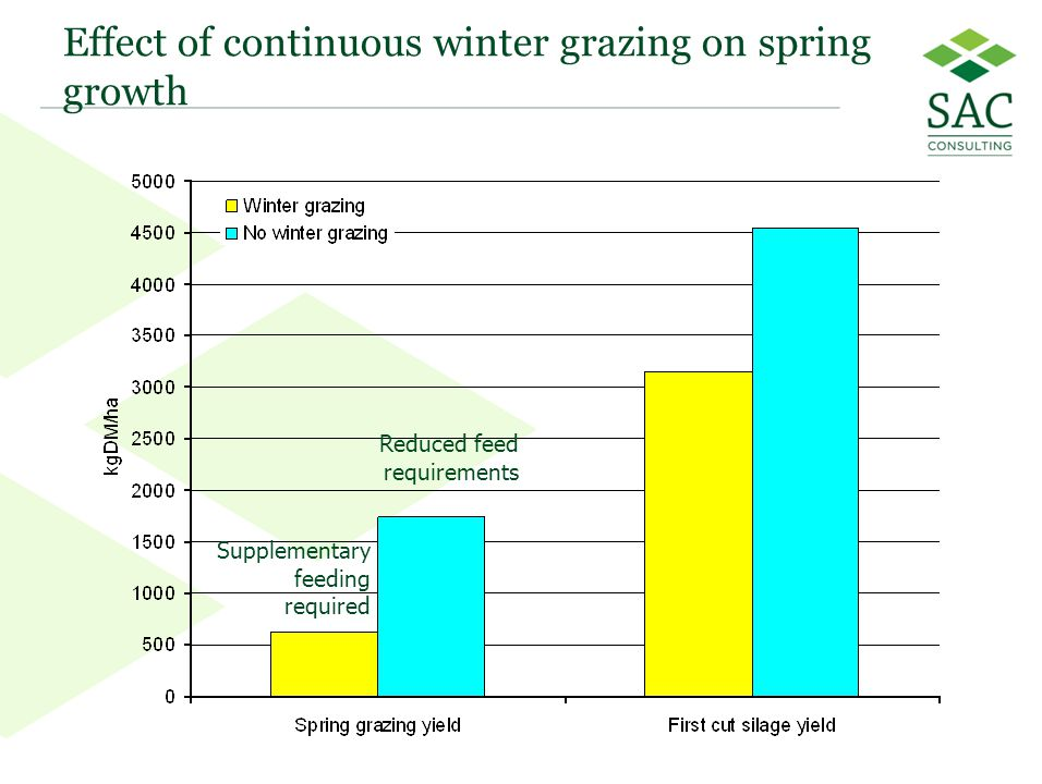 20 Effect of continuous winter grazing on spring growth Supplementary feeding required Reduced feed requirements
