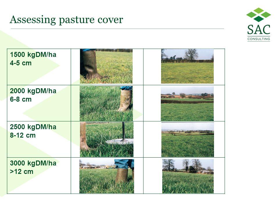44 Assessing pasture cover 1500 kgDM/ha 4-5 cm 2000 kgDM/ha 6-8 cm 2500 kgDM/ha 8-12 cm 3000 kgDM/ha >12 cm