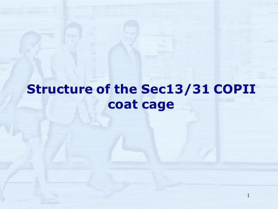 1 Structure of the Sec13/31 COPII coat cage