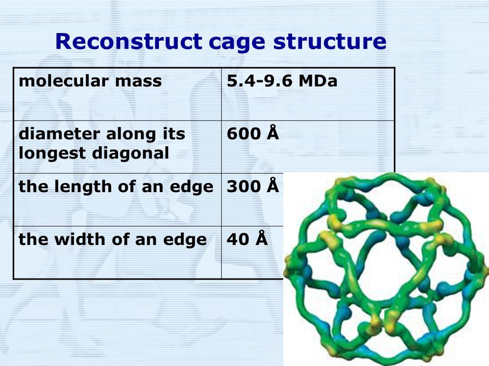 15 Reconstruct cage structure molecular mass5.4-9.6 MDa diameter along its longest diagonal 600 Å the length of an edge300 Å the width of an edge40 Å