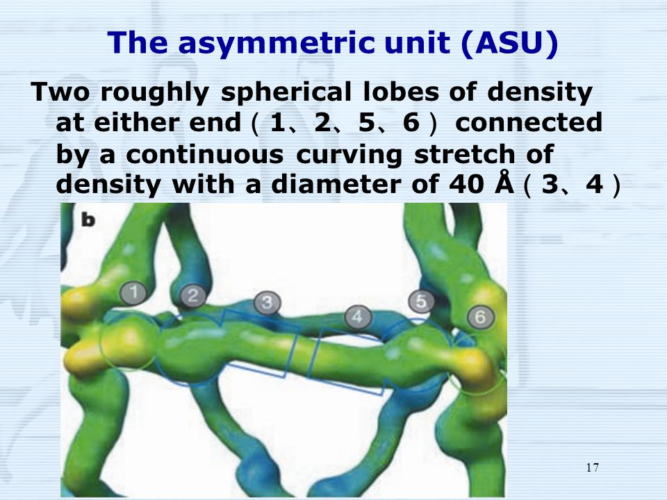 17 The asymmetric unit (ASU) Two roughly spherical lobes of density at either end ( 1 、 2 、 5 、 6 ) connected by a continuous curving stretch of density with a diameter of 40 Å ( 3 、 4 )