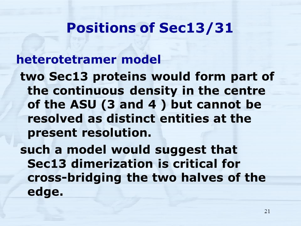 21 Positions of Sec13/31 heterotetramer model two Sec13 proteins would form part of the continuous density in the centre of the ASU (3 and 4 ) but cannot be resolved as distinct entities at the present resolution.