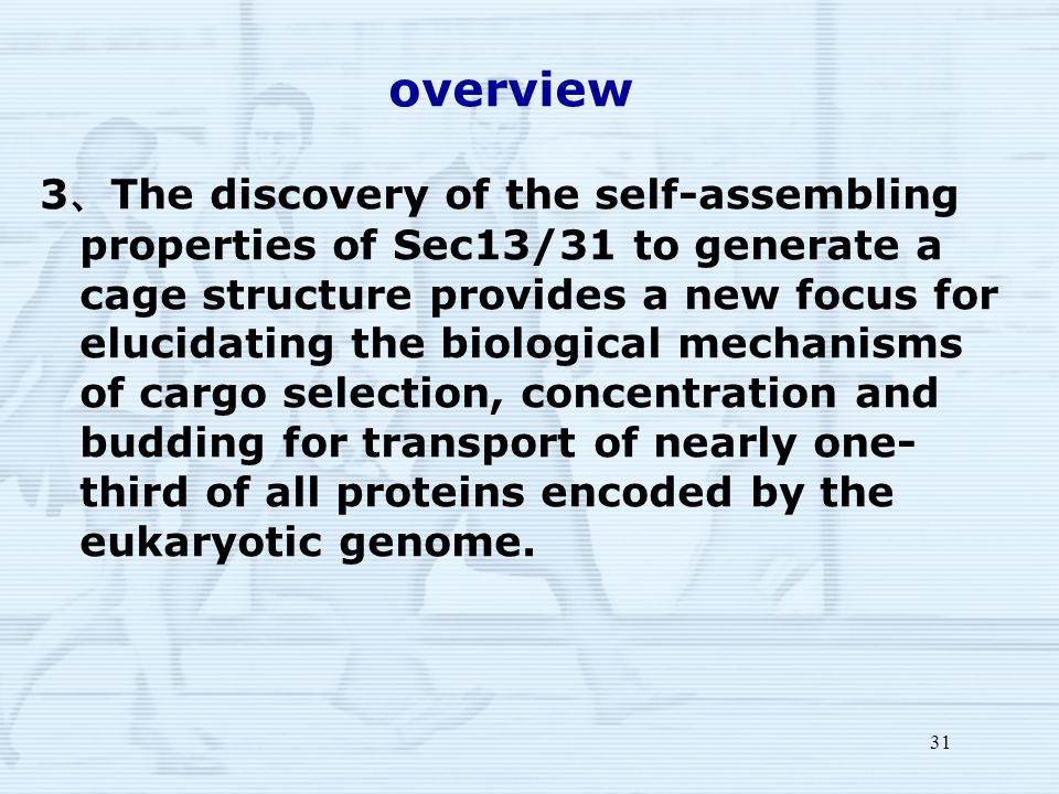 31 overview 3 、 The discovery of the self-assembling properties of Sec13/31 to generate a cage structure provides a new focus for elucidating the biological mechanisms of cargo selection, concentration and budding for transport of nearly one- third of all proteins encoded by the eukaryotic genome.