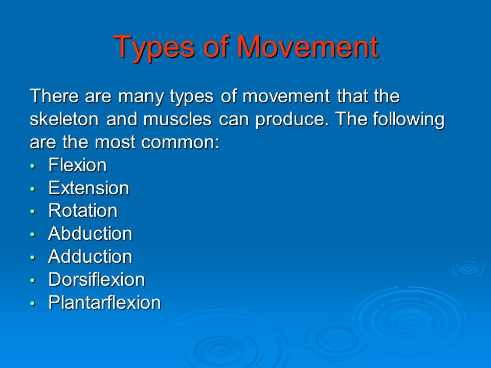 Types of Movement There are many types of movement that the skeleton and muscles can produce. The following are the most common: Flexion Flexion Exten