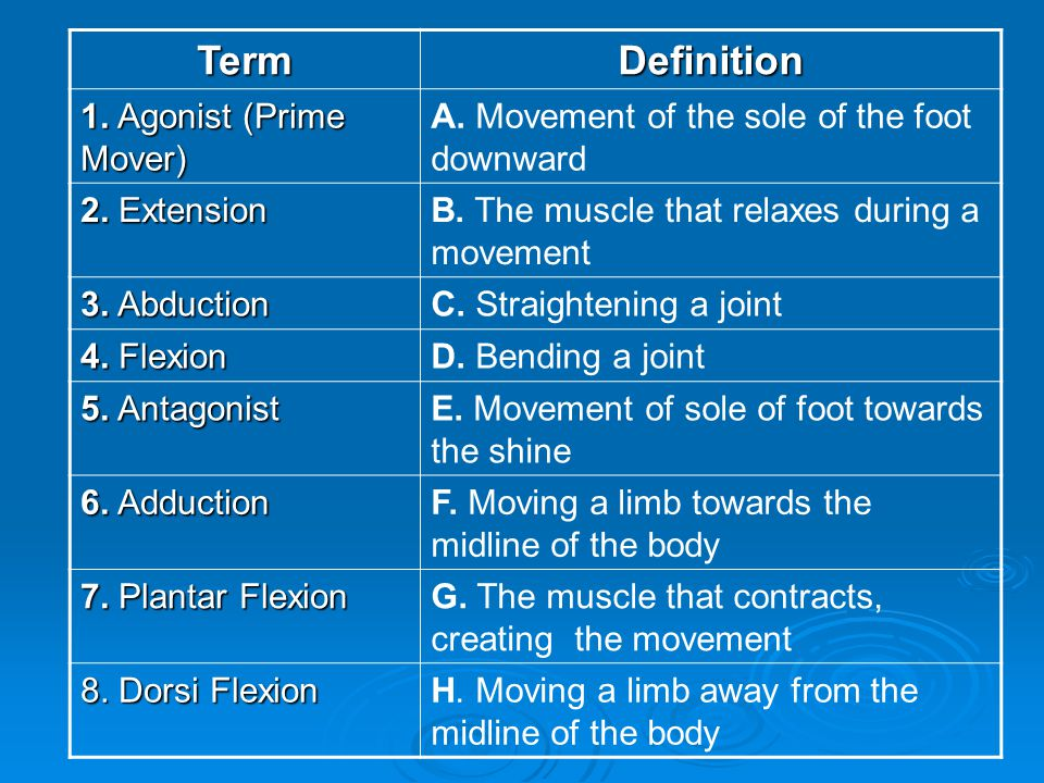 TermDefinition 1. Agonist (Prime Mover) A. Movement of the sole of the foot downward 2. Extension B. The muscle that relaxes during a movement 3. Abdu