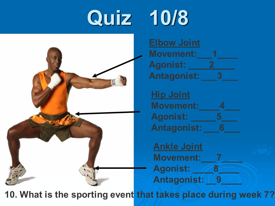 Quiz 10/8 Ankle Joint Movement:___7____ Agonist: ____8____ Antagonist: __9____ Hip Joint Movement:____4___ Agonist: _____5___ Antagonist: ___6___ Elbo