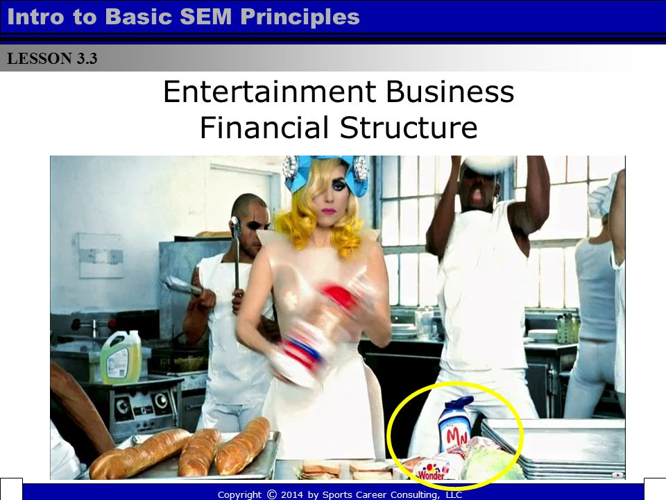 LESSON 3.3 Intro to Basic SEM Principles Entertainment Business Financial Structure Copyright © 2014 by Sports Career Consulting, LLC