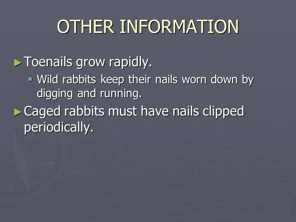 OTHER INFORMATION ► Toenails grow rapidly.