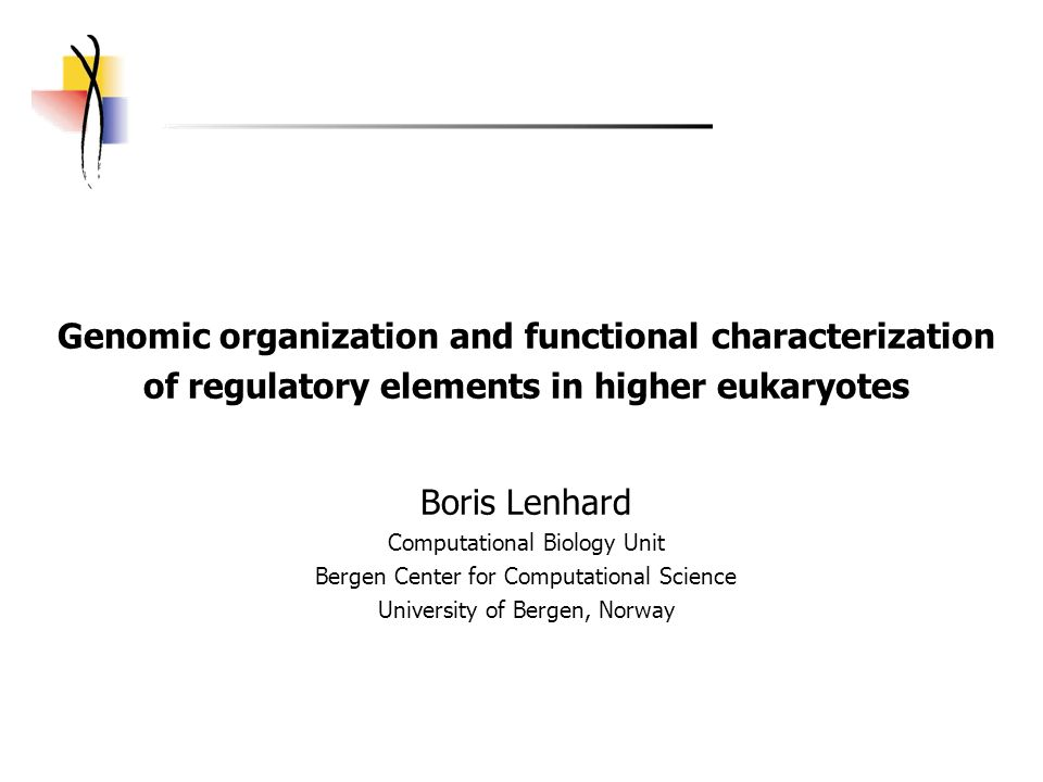 Genomic organization and functional characterization of regulatory elements in higher eukaryotes Boris Lenhard Computational Biology Unit Bergen Center for Computational Science University of Bergen, Norway