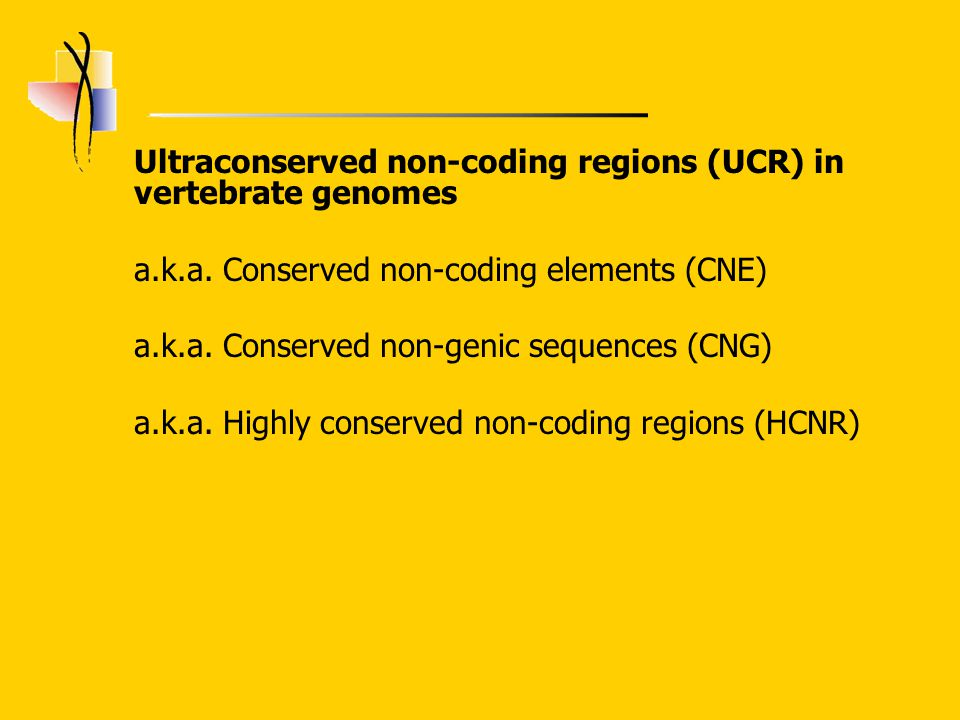 Ultraconserved non-coding regions (UCR) in vertebrate genomes a.k.a.