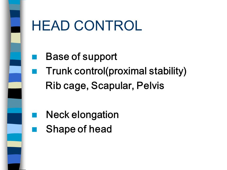 HEAD CONTROL Most important part of the body - Appearance (expression) - Function of vision, breathing, eating, speech, auditory - Mirror of postural