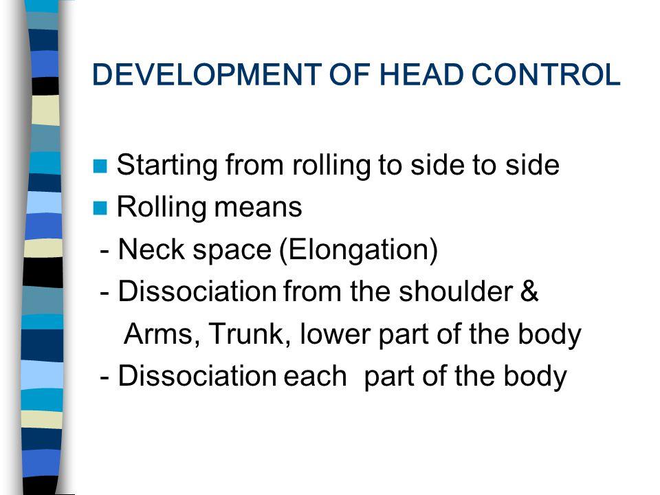 HEAD CONTROL(III) Vestibulocollic reflex Vestibulospinal reflex Vestibuloocular reflex Optokinetic reflex Tongue Maseters