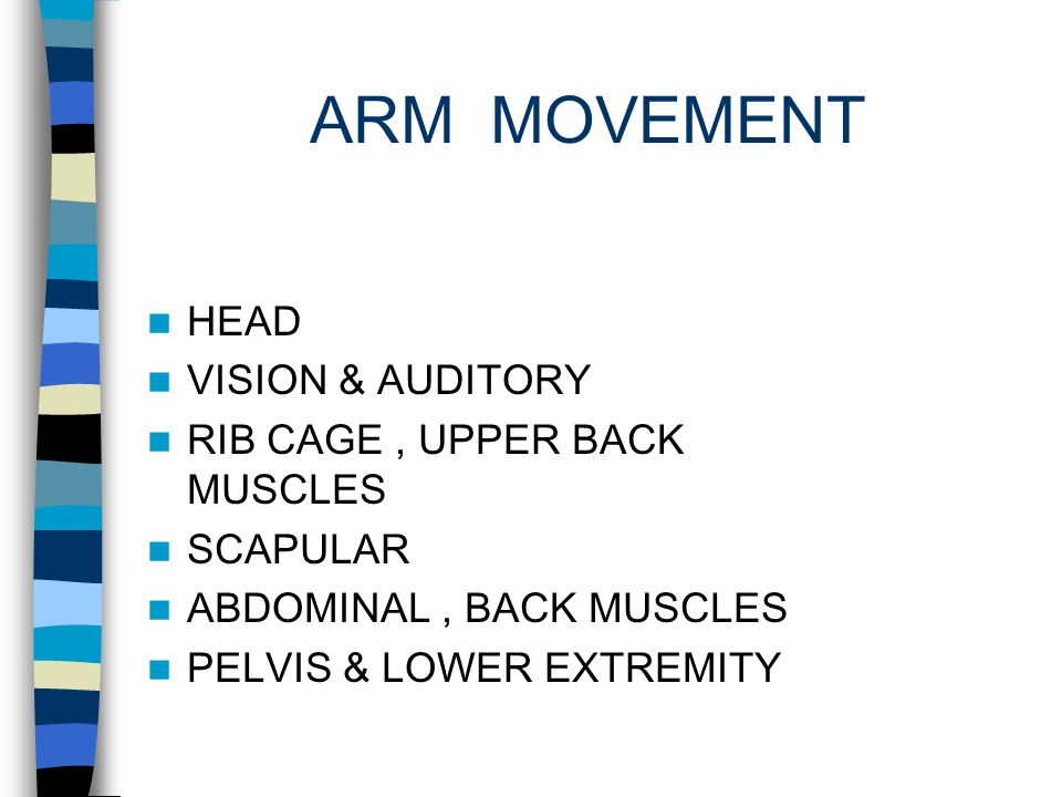 RIB CAGE SCAPULAR SHOULDER ARM, HAND HEAD CONTROL PROXIMAL ABDOMEN,TRUNK, PELVIS HIP KNEE ANKLE ARM MOVEMENT