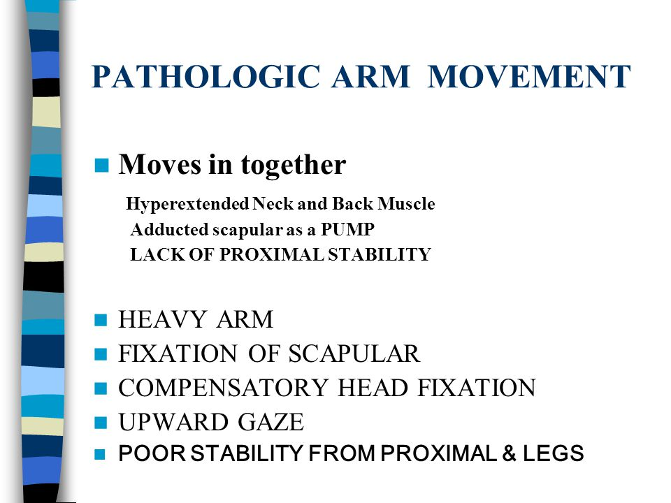 HEAD VISION & AUDITORY RIB CAGE, UPPER BACK MUSCLES SCAPULAR ABDOMINAL, BACK MUSCLES PELVIS & LOWER EXTREMITY