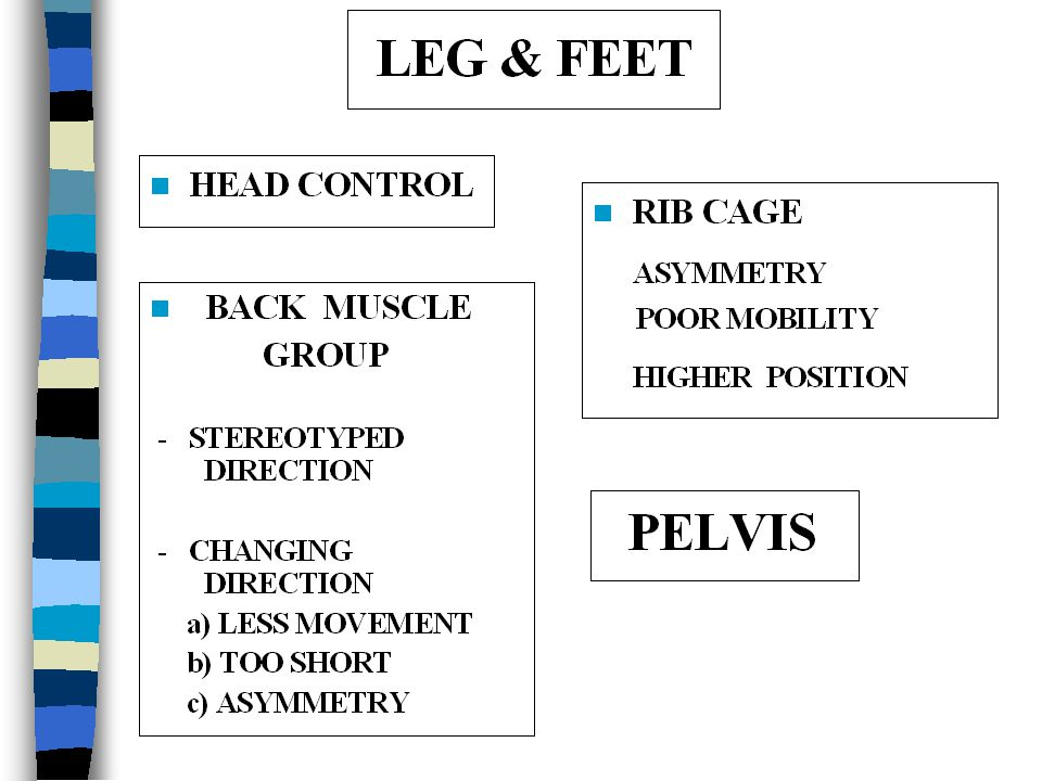 PATHOLOGIC PELVIC MOVEMENT MOVES TOGETHER LACK OF PROXIMAL STABILITY TYPICAL PATTERN SMALL RANGE OF MOVEMENT POOR DISSOCIATION INFLUENCE TO LEG MOVEME