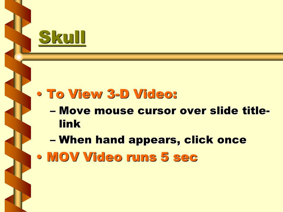 Skull To View 3-D Video:To View 3-D Video: –Move mouse cursor over slide title- link –When hand appears, click once MOV Video runs 5 secMOV Video runs 5 sec