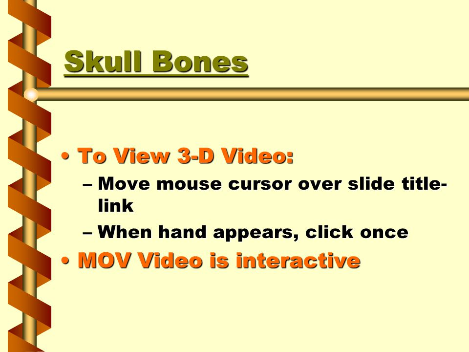 Skull Bones Skull Bones To View 3-D Video:To View 3-D Video: –Move mouse cursor over slide title- link –When hand appears, click once MOV Video is interactiveMOV Video is interactive