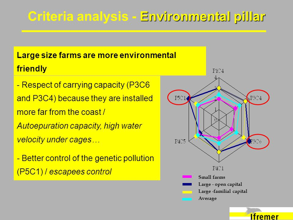 Environmental pillar Criteria analysis - Environmental pillar - Respect of carrying capacity (P3C6 and P3C4) because they are installed more far from the coast / Autoepuration capacity, high water velocity under cages… - Better control of the genetic pollution (P5C1) / escapees control Large size farms are more environmental friendly Small farms Large - open capital Large -familial capital Average