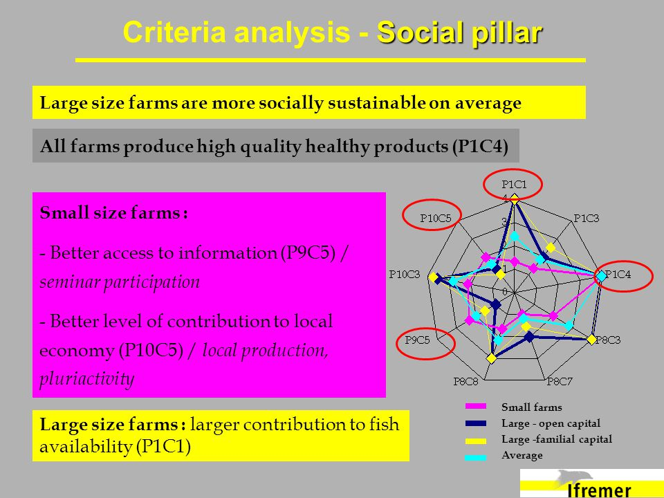 Social pillar Criteria analysis - Social pillar Small size farms : - Better access to information (P9C5) / seminar participation - Better level of contribution to local economy (P10C5) / local production, pluriactivity Large size farms are more socially sustainable on average Large size farms : larger contribution to fish availability (P1C1) All farms produce high quality healthy products (P1C4) Small farms Large - open capital Large -familial capital Average
