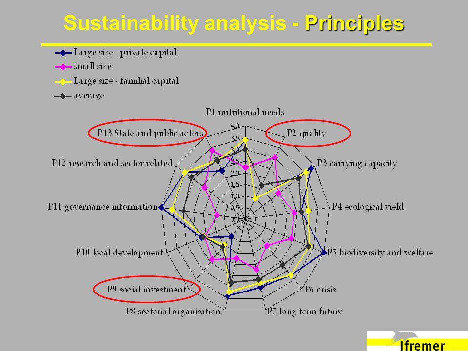 Principles Sustainability analysis - Principles