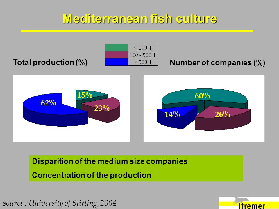 Mediterranean fish culture Total production (%) source : University of Stirling, 2004 62% 15% 23% 14% 60% 26% Number of companies (%) Disparition of t