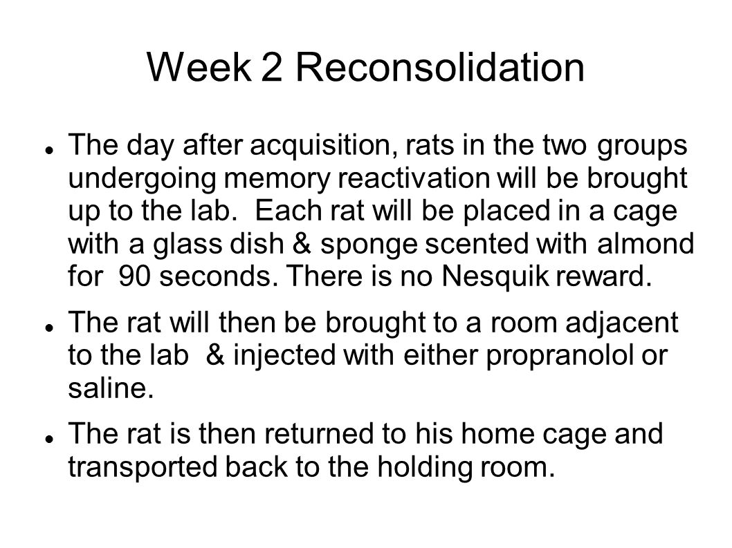 Week 2 Reconsolidation The day after acquisition, rats in the two groups undergoing memory reactivation will be brought up to the lab.