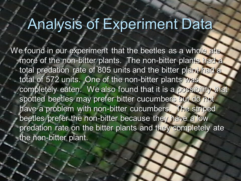 Analysis of Experiment Data We found in our experiment that the beetles as a whole ate more of the non-bitter plants.