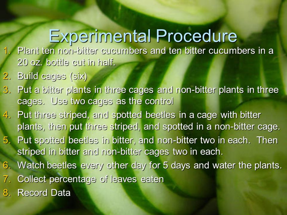 Experimental Procedure 1.Plant ten non-bitter cucumbers and ten bitter cucumbers in a 20 oz.