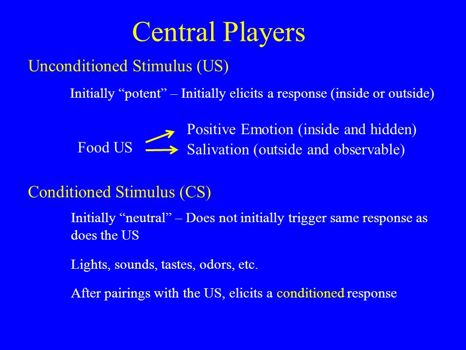 Central Players Conditioned Stimulus (CS) Unconditioned Stimulus (US) Initially potent – Initially elicits a response (inside or outside) Initially neutral – Does not initially trigger same response as does the US Lights, sounds, tastes, odors, etc.
