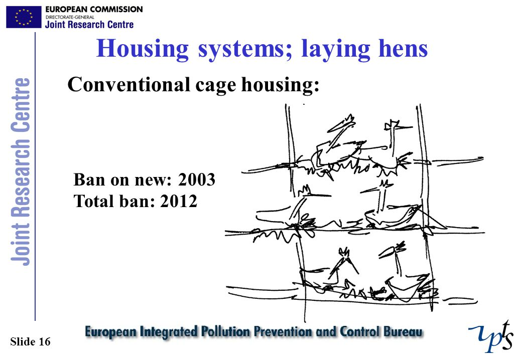 Slide 16 Housing systems; laying hens Conventional cage housing: Ban on new: 2003 Total ban: 2012