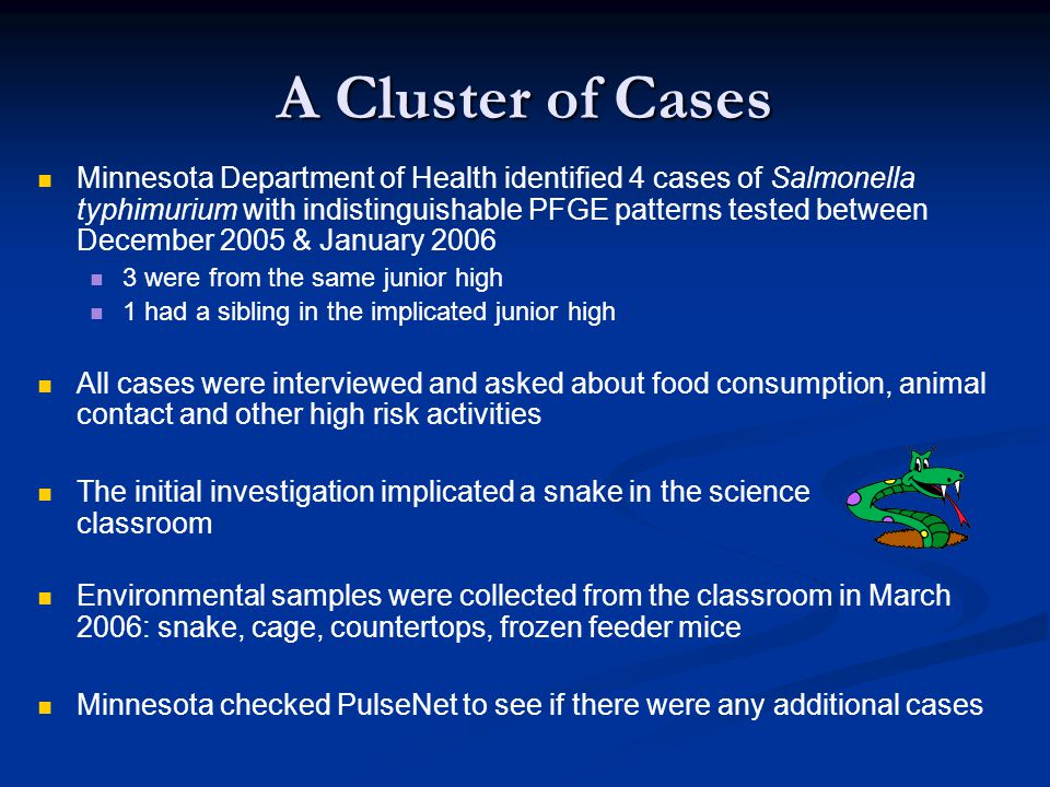 A Cluster of Cases Minnesota Department of Health identified 4 cases of Salmonella typhimurium with indistinguishable PFGE patterns tested between December 2005 & January 2006 3 were from the same junior high 1 had a sibling in the implicated junior high All cases were interviewed and asked about food consumption, animal contact and other high risk activities The initial investigation implicated a snake in the science classroom Environmental samples were collected from the classroom in March 2006: snake, cage, countertops, frozen feeder mice Minnesota checked PulseNet to see if there were any additional cases