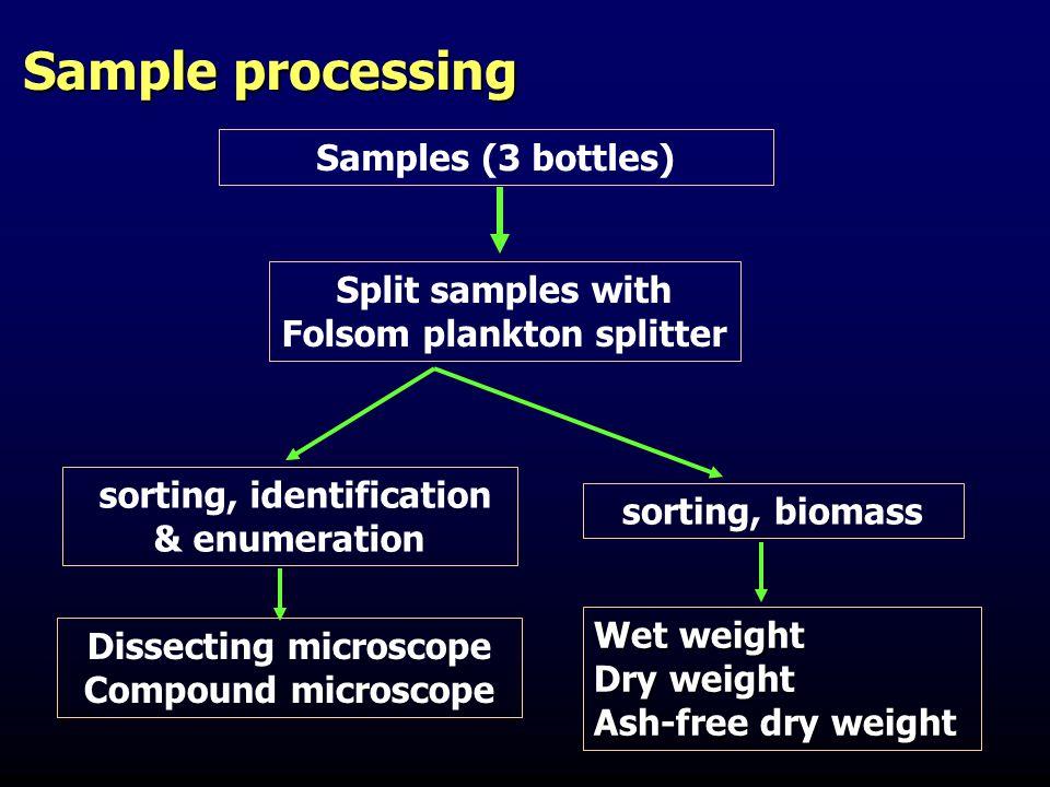 Sample processing Samples (3 bottles) Split samples with Folsom plankton splitter sorting, identification & enumeration sorting, biomass Wet weight Dr