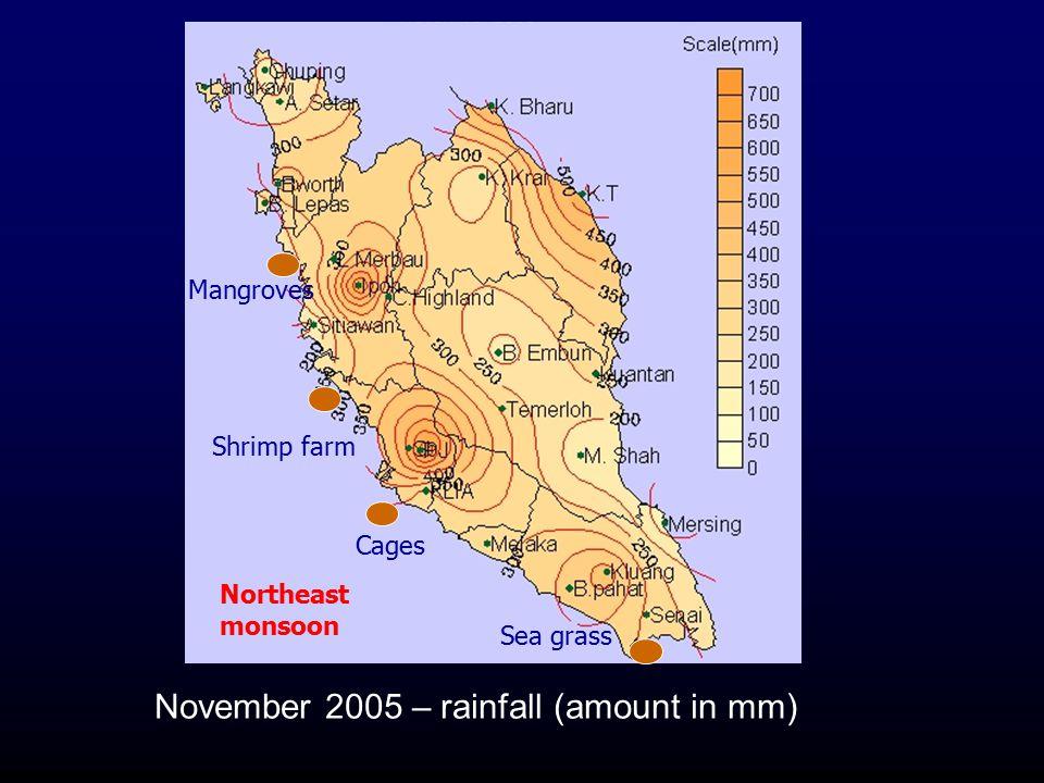 November 2005 – rainfall (amount in mm) Northeast monsoon Sea grass Shrimp farm Cages Mangroves
