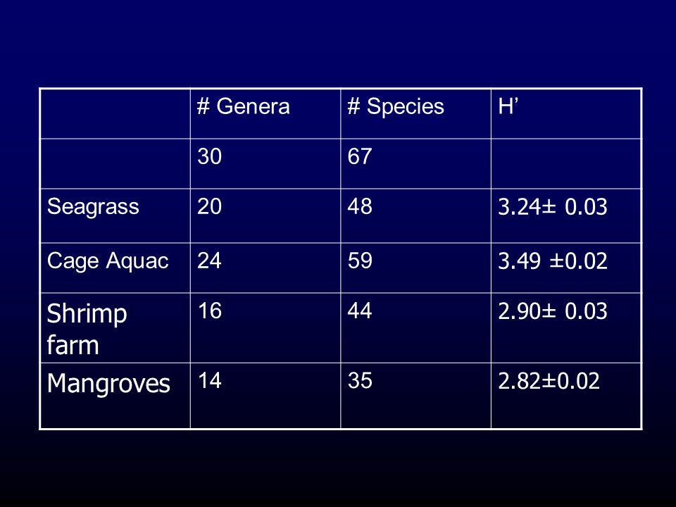 # Genera# SpeciesH' 3067 Seagrass2048 3.24± 0.03 Cage Aquac2459 3.49 ±0.02 Shrimp farm 1644 2.90± 0.03 Mangroves 1435 2.82±0.02