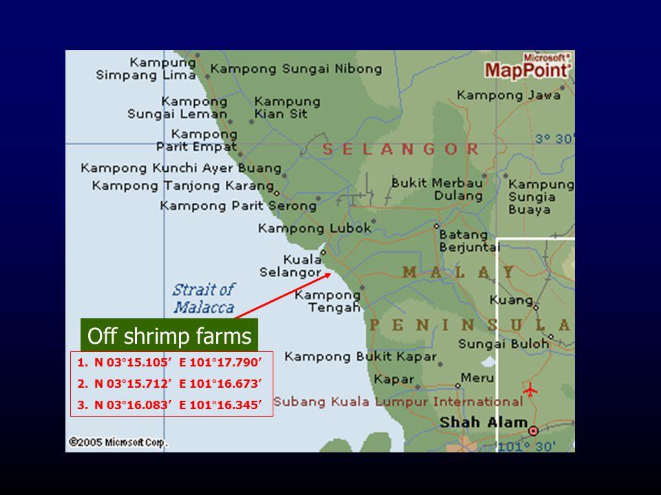 1.N 03°15.105' E 101°17.790' 2.N 03°15.712' E 101°16.673' 3.N 03°16.083' E 101°16.345' Off shrimp farms