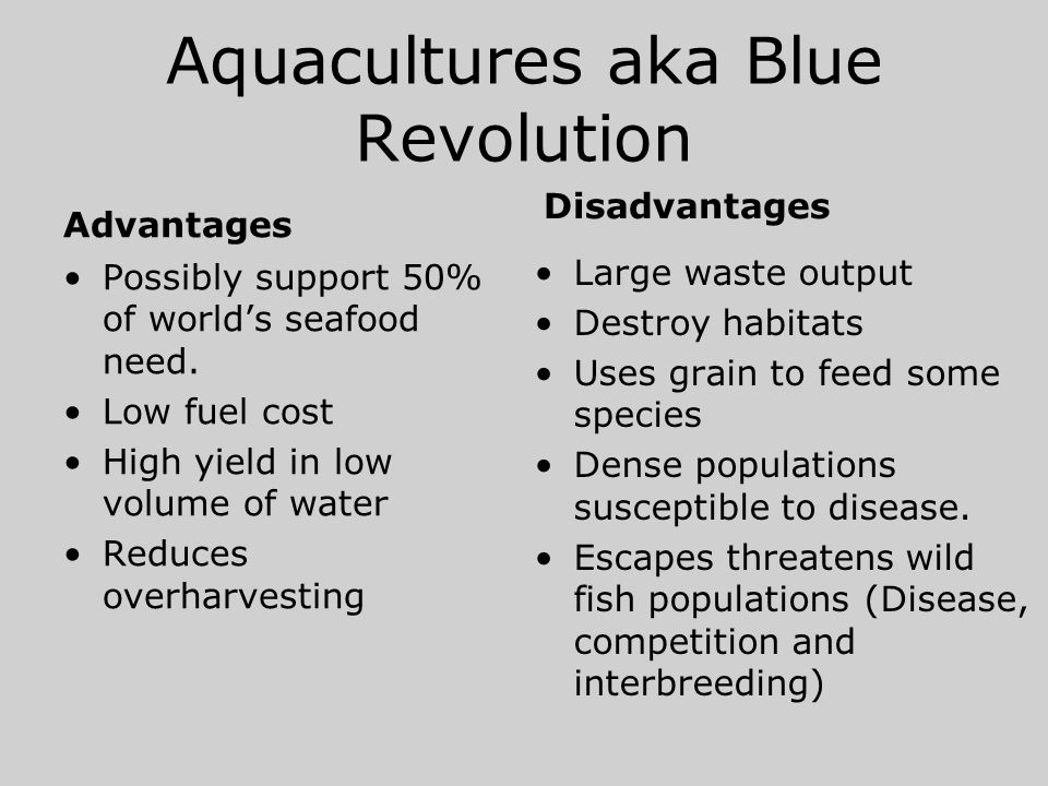 Aquacultures aka Blue Revolution Advantages Possibly support 50% of world's seafood need. Low fuel cost High yield in low volume of water Reduces over